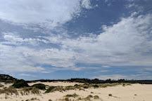 Henty Dunes, Strahan, Australia