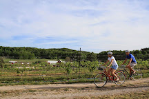 Grand Traverse Bike Tours, Suttons Bay, United States