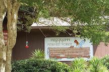Mississippi Petrified Forest, Mississippi, United States