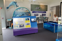 Chatham Shark Center, Chatham, United States