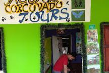 Jaguar Corcovado Tours, Puerto Jimenez, Costa Rica