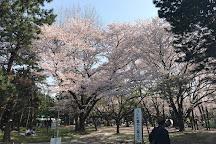 Mihama Park, Urayasu, Japan