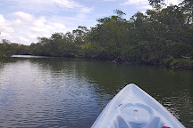 Kayak Excursions, Fort Myers, United States