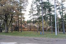 Sunnidale Park Arboretum, Barrie, Canada