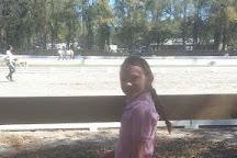 Middleton Equestrian Center, Charleston, United States