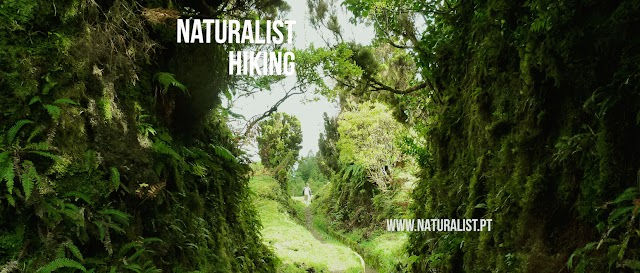 Azores Naturalist - Science & Tourism