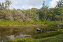 Spittal Pond Nature Reserve, Bermuda
