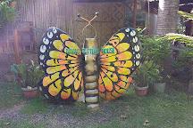 Davao Butterfly House, Davao City, Philippines