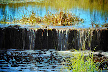 Bognor Marsh Management Area, Meaford, Canada