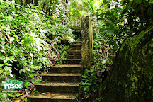 La Mina Falls, El Yunque National Forest, Puerto Rico