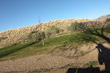 Cortez Dog Park, Cortez, United States