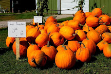 Erickson Orchard and Country Store, Bayfield, United States