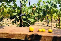 De La Montanya Winery & Vineyards, Healdsburg, United States
