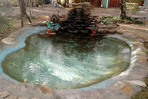 Essence of Tranquility, Safford, United States