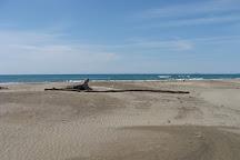 Espiguette Beach, Le Grau-du-Roi, France