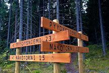 Paijatsalo Trail, Sysma, Finland