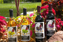Flower Valley Vineyard, Red Wing, United States