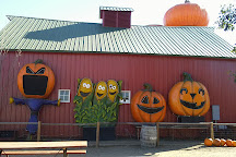 Anderson Farms, Erie, United States