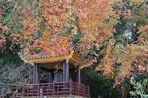 Ciyun Temple, Chiayi County, Taiwan