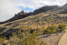 Mule Ears Spring Trail, Big Bend National Park, United States