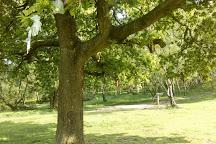 Nine Ladies Stone Circle, Matlock, United Kingdom