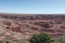 Crystal Forest Trail, Petrified Forest National Park, United States