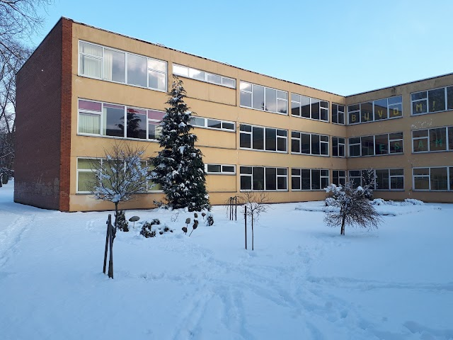 Hermano Zudermano gimnazija