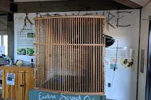 Merkle Wildlife Sanctuary, Upper Marlboro, United States