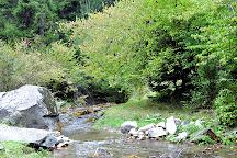 Borjomi-Kharagauli National Park, Borjomi, Georgia