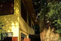 Healing Family Foundation, Chiang Mai, Thailand