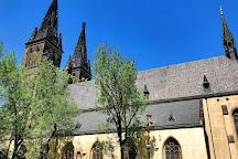Saint Peter and Paul Cathedral, Prague, Czech Republic