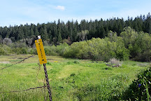 Empire Mine State Historic Park, Grass Valley, United States