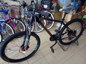 Panam Bike