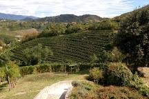 Societa Agricola Vigne Matte Srl, Rolle, Italy
