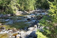 Kokanee Creek Provincial Park, Balfour, Canada