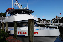 Freedom Cruise Line, Harwich Port, United States