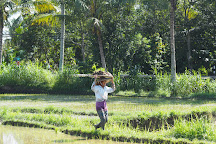 Be Balinese Tour, Ubud, Indonesia