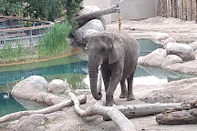 Utah's Hogle Zoo, Salt Lake City, United States