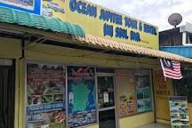 Ocean Jupiter, Batu Ferringhi, Malaysia