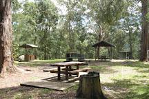 Watagans National Park, Lake Macquarie, Australia