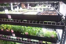 Farm.One, New York City, United States