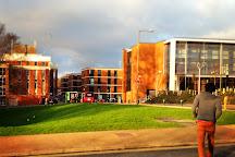 University of Sussex, Brighton, United Kingdom