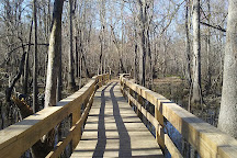 Waccamaw River Park, Conway, United States