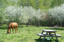 Dromoland Orchard & Stables, Little Britain, Canada