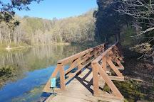Saunders Springs Nature Preserve, Radcliff, United States
