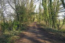 Red Squirrel Trail, Isle of Wight, United Kingdom