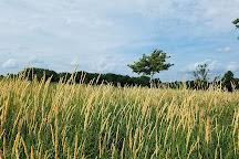 Scott County Park, Eldridge, United States