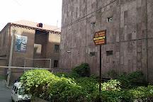 Ara Sargsyan and Hakob Kojoian House-Museum, Yerevan, Armenia