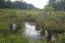 Edwin M. Griffin Nature Preserve, Spartanburg, United States