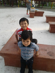 Caja Arequipa 8